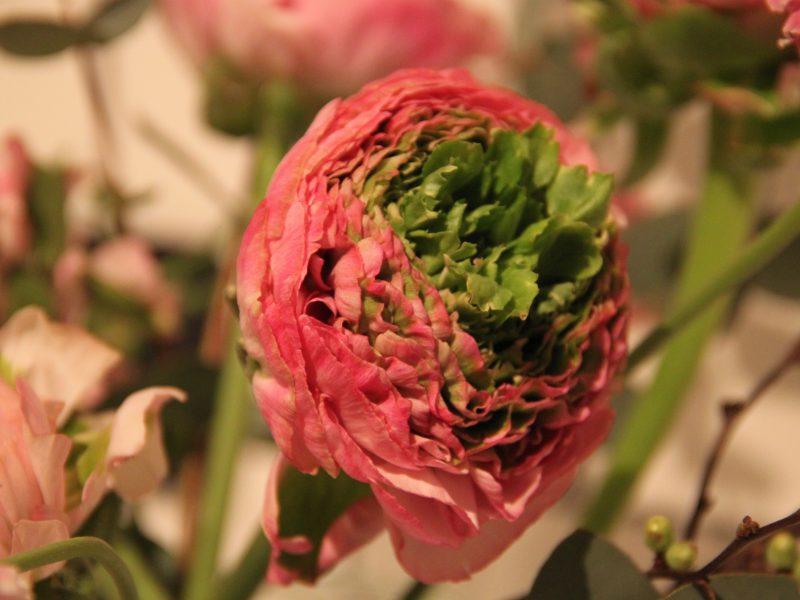 Frische Blumen für dein Event